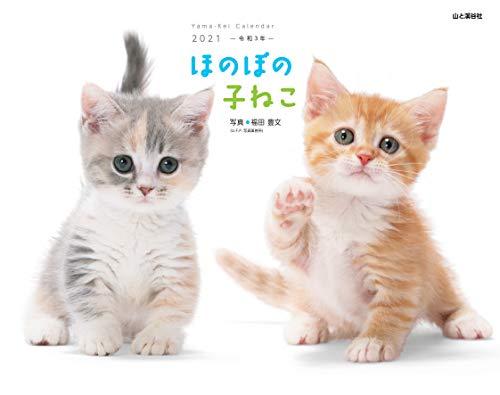 カレンダー2021 ほのぼの子ねこ (月めくり・壁掛け) (ヤマケイカレンダー2021)の詳細を見る