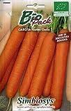 sementi biologiche per ortaggi in bustina ad uso amatoriale (carota nantese)