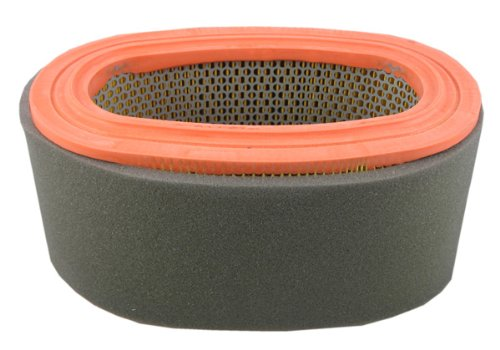 Pentius PAB7438 UltraFLOW Air Filter for Ford...