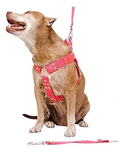 Coleira Peitoral Cachorro Guia Adaptador Cinto Segurança Tamanho G - Cor Vermelha