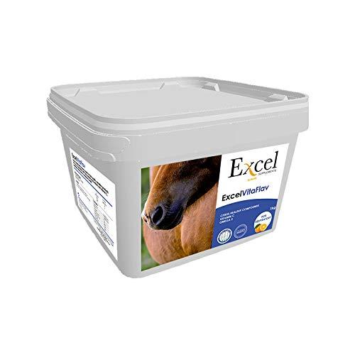 Excel Supplements Europe Excel VitaFlav 1Kg   Suplemento para Caballos   Suplemento respiratorio   Mejora la respiración del equino   Aumenta el Rendimiento del Caballo   Cuidado del Caballo