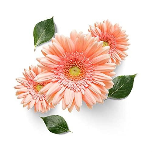 ZZLLFF Hermosas Flores de la Pared del Dormitorio Pegatina de baño for el hogar decoración decoración
