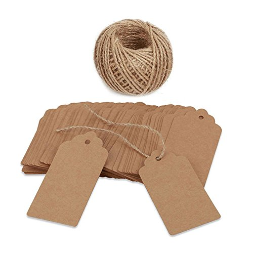 100 PCS Kraft Paper Tags with String