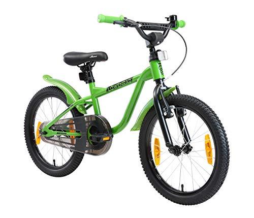 LÖWENRAD Kinderfahrrad für Jungen und Mädchen ab 5 Jahre | 18 Zoll Kinderrad mit Bremse | Fahrrad für Kinder | Grün