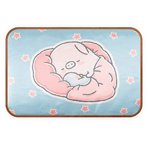 Allegorly Haustier Ice Pad Kühlung Cat Bed Teddy Matratze Mat Kühlung Gedrucktes herausnehmbares Haustierkissen aus kalter Seide für Hundekatze, Sommer-Cartoon, Eismatte für Hundezwinger