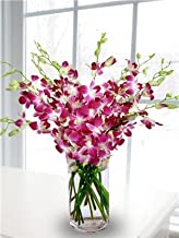 orchids delivered to your door