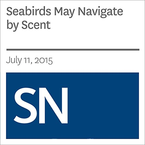 Seabirds May Navigate by Scent audiobook cover art
