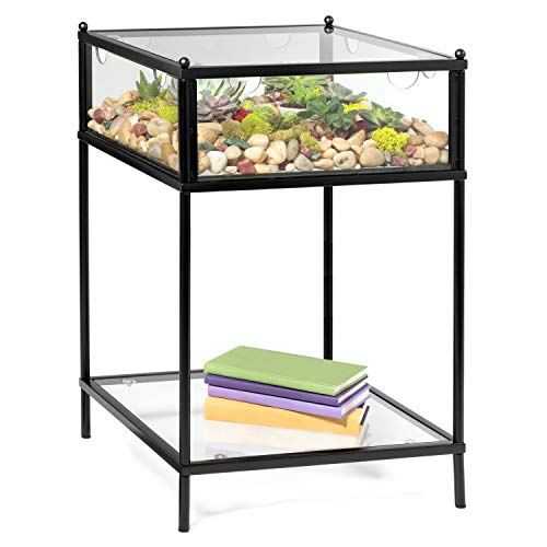 Deco Square Terrarium Display End Table with Reinforced Glass in Black Iron- 18' Width x 18' Length x 27' Height