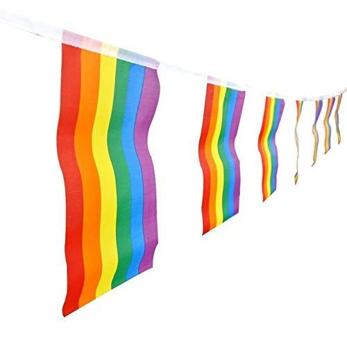 Pack 12 Guirnalda Cada Tira de 15 Banderines de 21 x 14 cm de Arcoíris de LGBT para Decoración de la Fiesta de Carnaval del Orgullo Gay