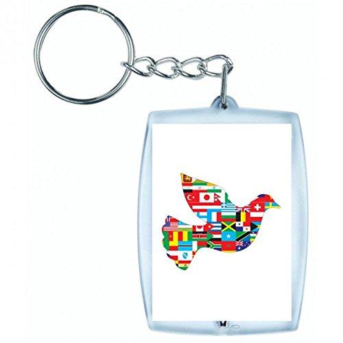 Druckerlebnis24 Schlüsselanhänger - Tier- Vogel- Grenzen- Kartographie- Kontinente- Zusammenarbeit- Länder- Taube- Flucht- Fliegen- Geographie- Globus - Keyring - Taschenanhänger - Schlüsselring