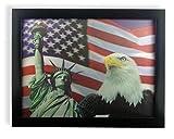 American Eagle Freiheitsstatue und Stars and Stripes Flagge