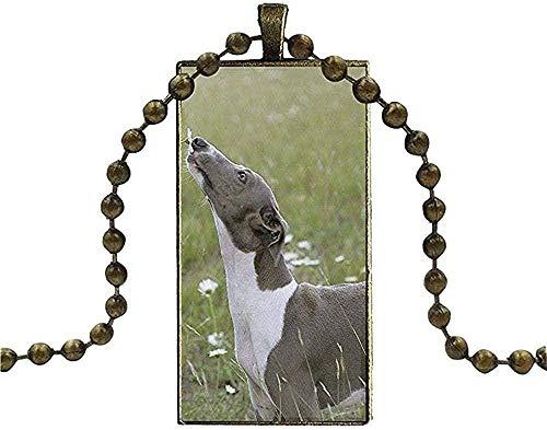 huangxuanchen co.,ltd Collar para Mujer Hombre Collar de Regalo Cadena Larga con Collar Rectangular Perro Galgo