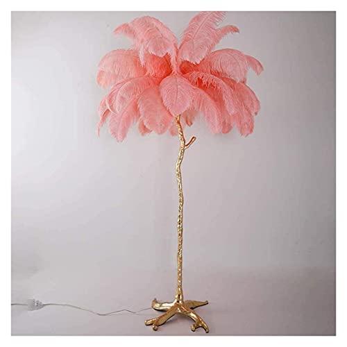 Raheem Lámparas de pie para Sala de Estar, Avestruz Lámpara de Planta LED de Plumas Naturales Muy adecuadas para la Sala de Estar, Dormitorio, llenará su habitación con un Ambiente cálido y romántico