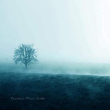 Fog Light Into Memories