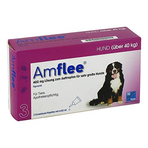 TAD Pharma GmbH Amflee 402 mg Lösung zur, 3 STK