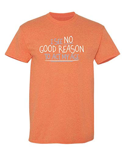 I See No Reason to Act My Age Graphic Novelty Sarcastic Funny T Shirt S Sunset
