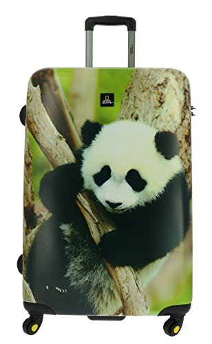 National Geographic Nature of Love Panda valigia a 4 ruote 79 cm