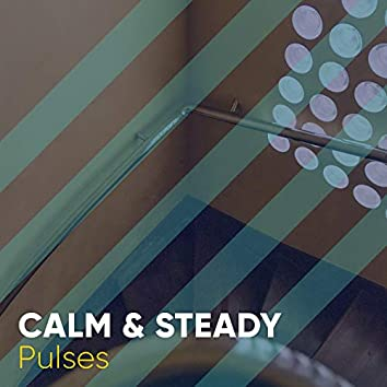 Calm & Steady Pulses, Vol. 3
