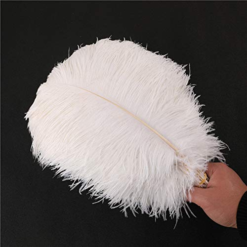 Bakermiche 10pcs Natural Plumas de Avestruz Ostrich Pluma decoración Pendiente Alas Dream Catcher Artesanía para Boda Mesa decoración para el hogar Blanco Plumas Naturales de Avestruz