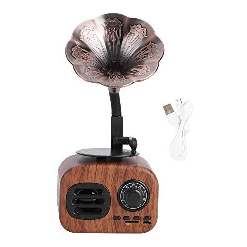 Altoparlante wireless per grammofono retrò, altoparlante stereo per lettore musicale...
