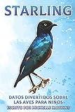 Starling: Datos divertidos sobre las aves para niños #31