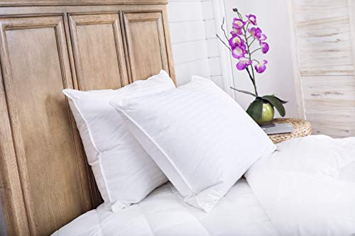 Continental Bedding Hungarian White Goose Down Pillow review