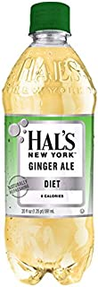 Hal's New York Diet Ginger Ale 20 Oz (24 Pack)