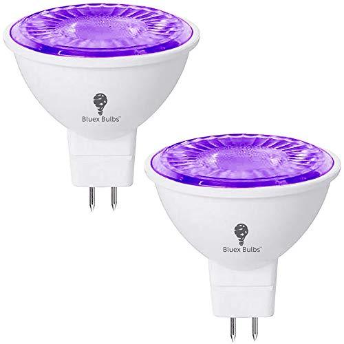 bombilla neon de la marca Bluex Bulbs