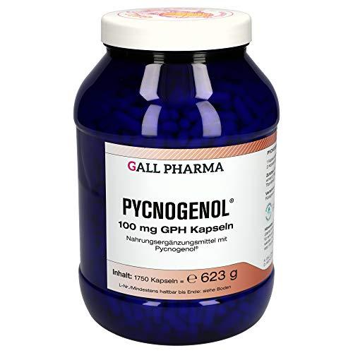 Gall Pharma Pycnogenol 100 mg GPH Kapseln, 1750 Kapseln