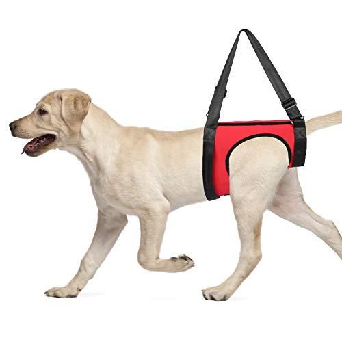 YOUTHINK Arnés de Soporte para Perros Ayuda para Caminar para Mascotas Chaleco de elevación para Perros Viejos y heridos (Pata Trasera L)
