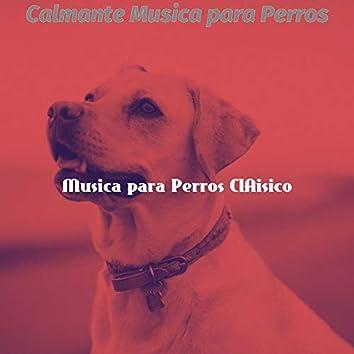 Calmante Musica para Perros