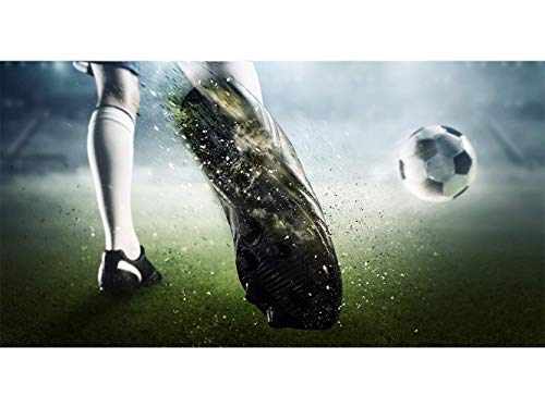 Oedim Stickers muraux Photo Image | Raison Football Sportive | De 500 x 300 cm | Sticker Vinyle Adhésif Autocollant Fond Mural |