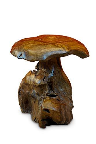 Kinaree Wurzelholz Skulptur Pilz klein - 40 cm Teak Holz Pilz - Dekoration für Garten Terrasse und Wohnzimmer