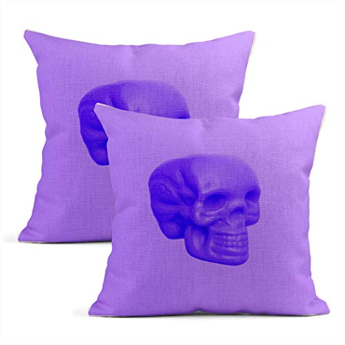 Heyqqo Set of 2 Cushion Covers Linen Purple Mood Skull Colours Trend Fashion Minimal Art Hipster Dead Pillowcases Square Soft Home Decor Pillow Cases Sofa Bedroom 26x26 Inch