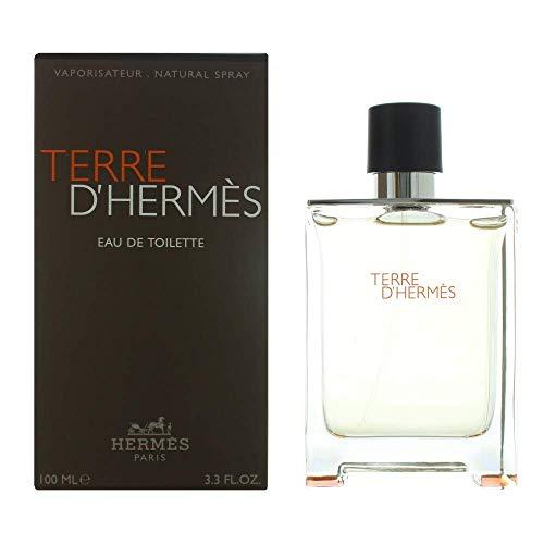Hermes Terre d'Hermes Eau de toilette spray, Uomo, 100 ml