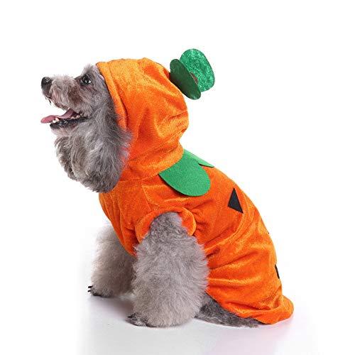 Wankd Kleidung für Hunde Katze Pet Puppy Dog Cat Pet Clothes, Kürbis Kleid Hundewelpen Katzen-Halloween-Kostüm-Kleidung-Haustier-Kleid Dress Up (M)