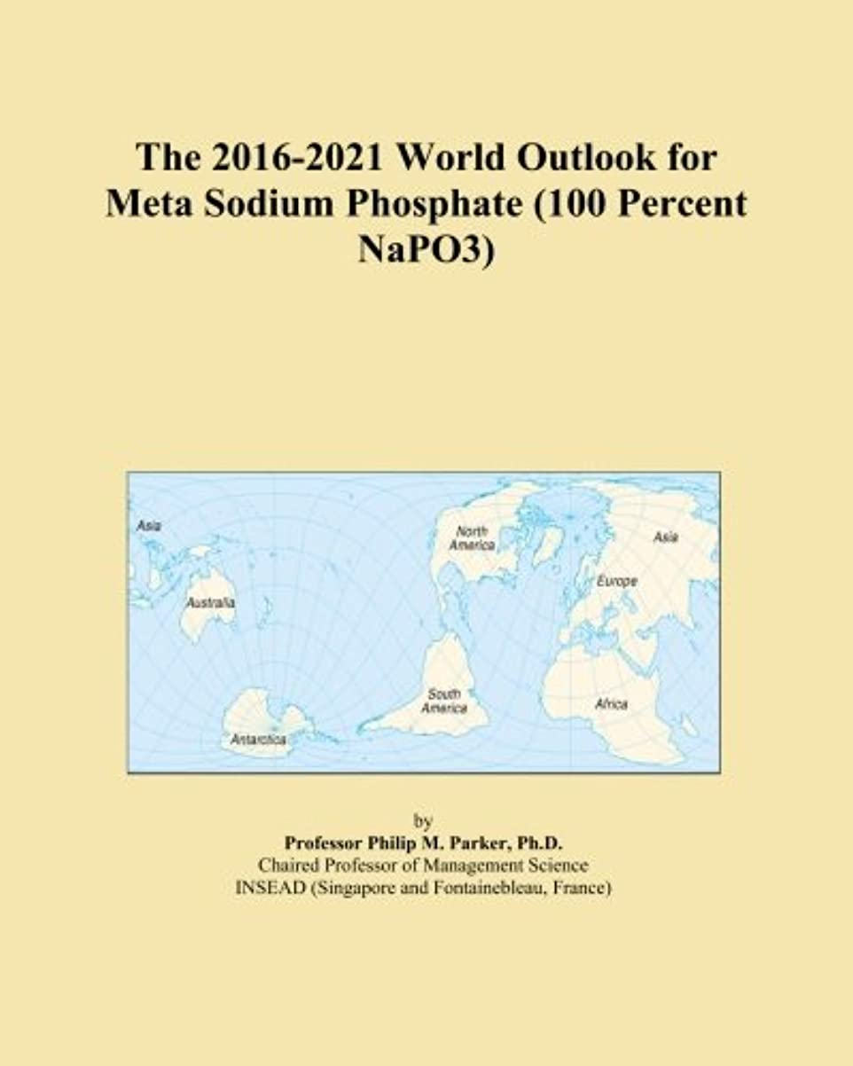 気付くアーカイブ緊張するThe 2016-2021 World Outlook for Meta Sodium Phosphate (100 Percent NaPO3)