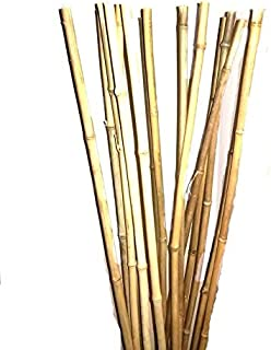 Empire Home Natural Thick Bamboo Stakes 3 Feet Tall About Half Inch Diameter - Pack of 8 (Natural Yellow)