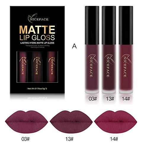 ESAILQ impermeabile opaco liquido rossetto cosmetico 3PCS Lip Gloss Kit rossetti labbra rossetti matte correttore cipria opaco