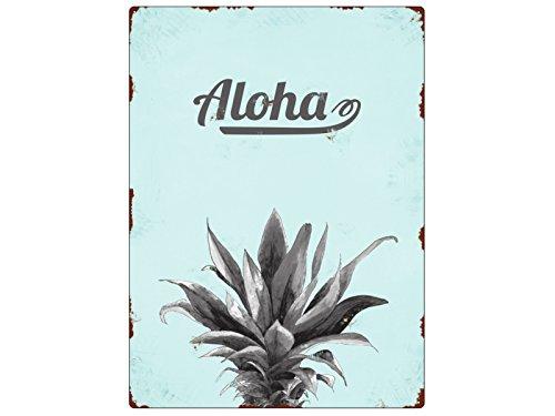 Interluxe WANDSCHILD Metallschild Ananas Aloha Shabby Geschenk Sommer Dekoration Retro