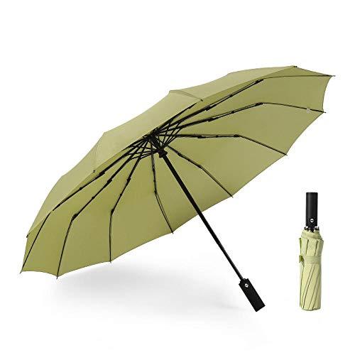 TAYIBO Paraguas Largo de Hombre Antiviento, Paraguas automático de Refuerzo de 12...