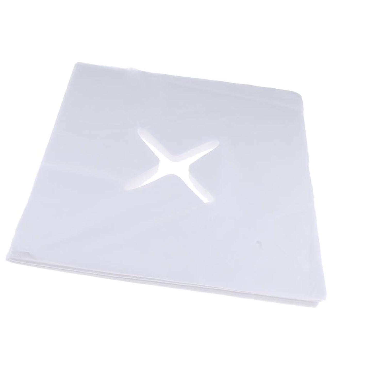 修理工荒廃する特権Perfeclan 約200枚 ピローシート 十字カット 使い捨て フェイスカバー 不織布PP クッション S/M - S