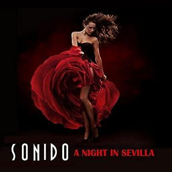 A Night in Sevilla