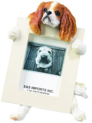 """Cavalier King (Brown) Charles Spaniel 2.5"""" x 3.5"""" Picture Frame by E&S Imports, Inc"""