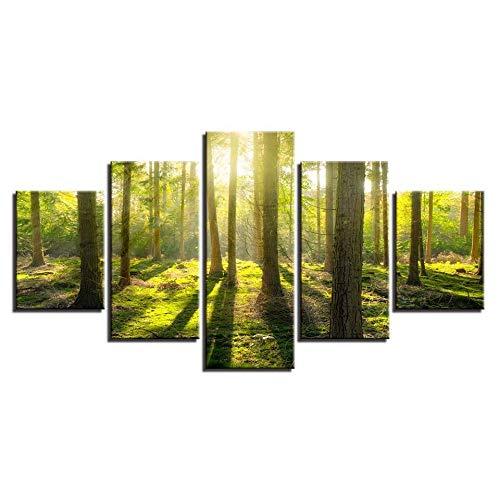 ZSHSCL kunstdruk op canvas, decoratief schilderwerk, kunstdruk, mooi boslandschap, motief, bedrukt, kunst, Wall Art Decor, kunstdruk, 5 stuks Small