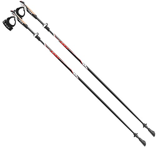 Nordic Walking Stöcke Carbon Vario Speed Lock
