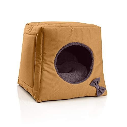 BedDog® Katzenhöhle 3in1 CALA, Katzenbox, Katzenhütte, Katzenkorb, kuscheliger Katzenschlafplatz, Katzenkissen, Haustierliegeplatz, Farbe GOLDEN-Brown (Gold/braun)
