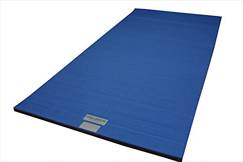 Product Image of the Dollamur Flexi-Roll® Carpeted Cheer/Gymnastics Mat