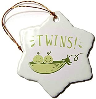 Delia32Agnes Xander Inspirational Quotes - Twins, Picture Two Peas in A Pod Green Lettering Christmas Ornaments Funny Novelty Porcelain Hanging