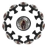 rodde Estilo magnífico gabinete de cerámica perillas Tire manijas para Muebles Armario cajón Armario Cocina baño,Monos Salvajes Primavera japón